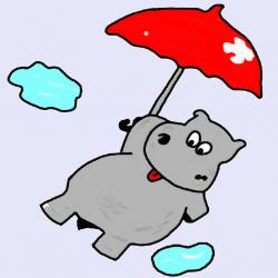 Hippo Hubbubs SDC